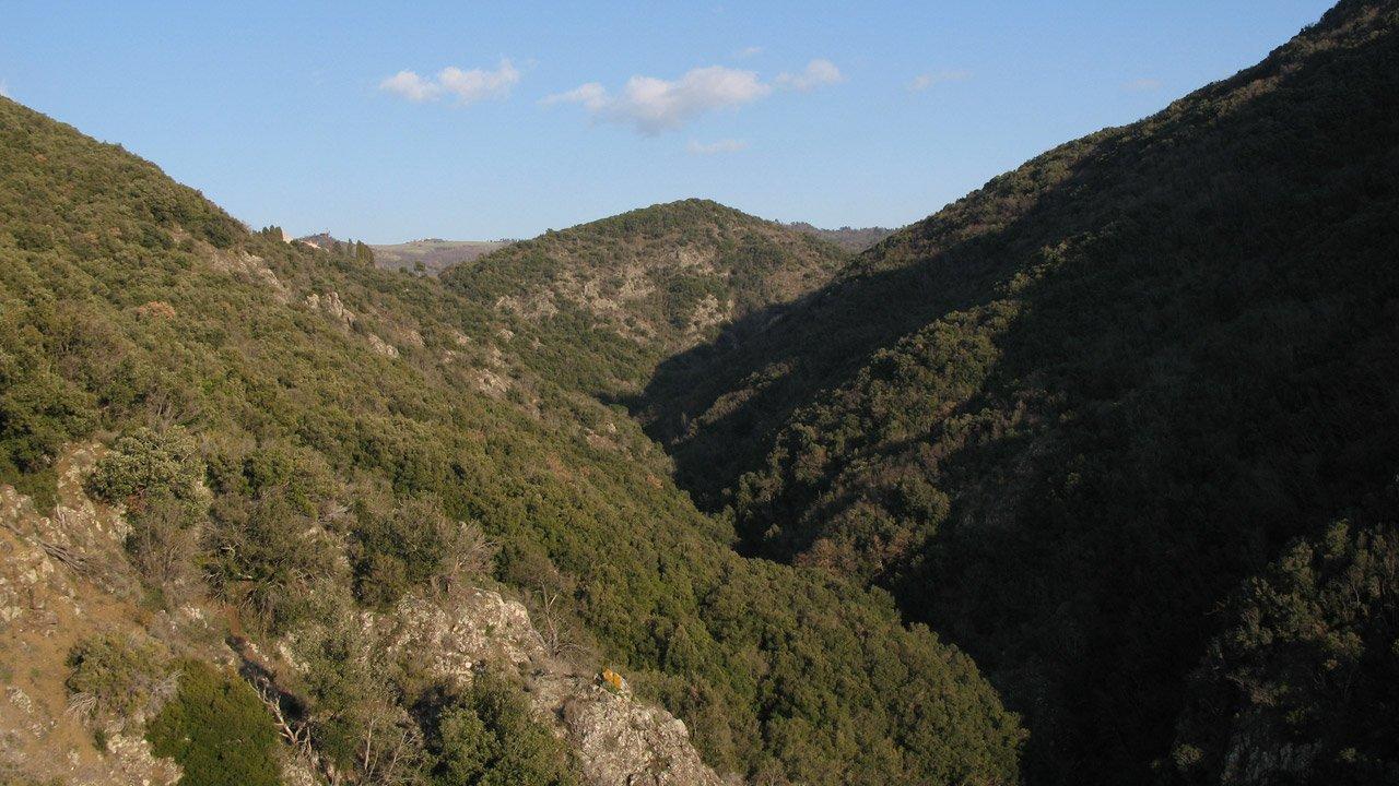 Montenero Nature Reserve