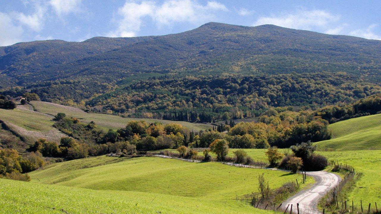 Berignone Nature Reserve