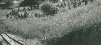 saline-di-volterra-storiche-32